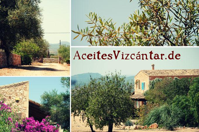 Schöne Grüße aus Andalusien