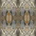 Design - nature varvara rock 2 - by pert, read more about this textile design